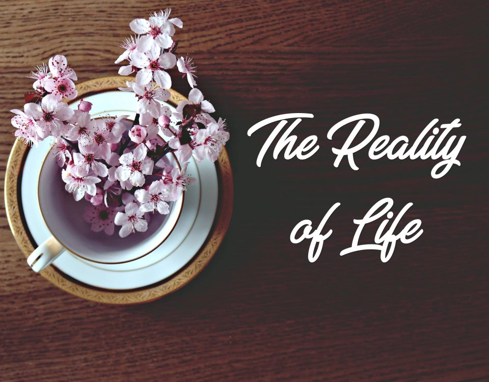 reality-of-life-featured-image